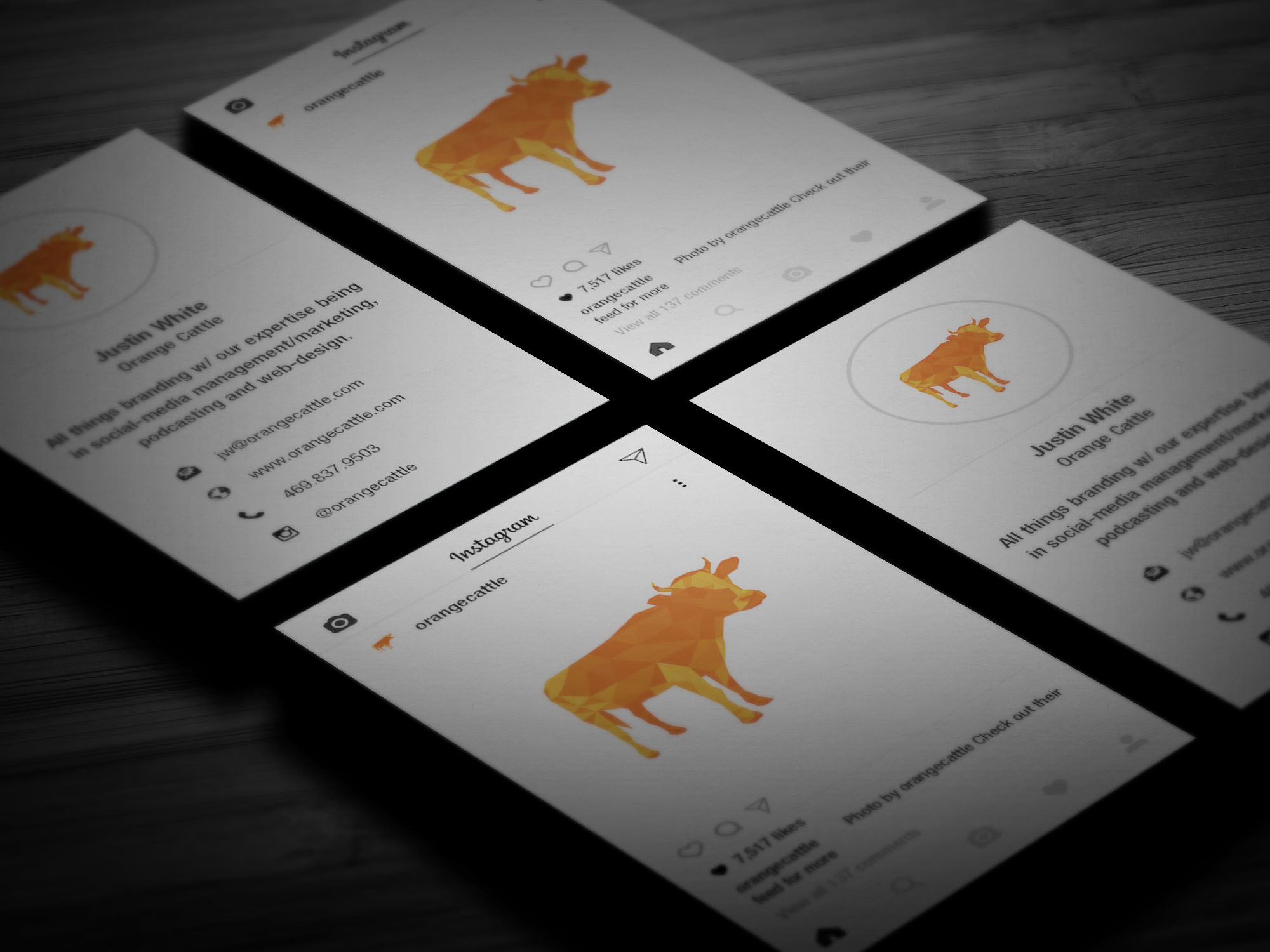 Orange Cattle is an ecommerce marketing and branding agency located in Houston, Dallas and Lufkin, Texas.
