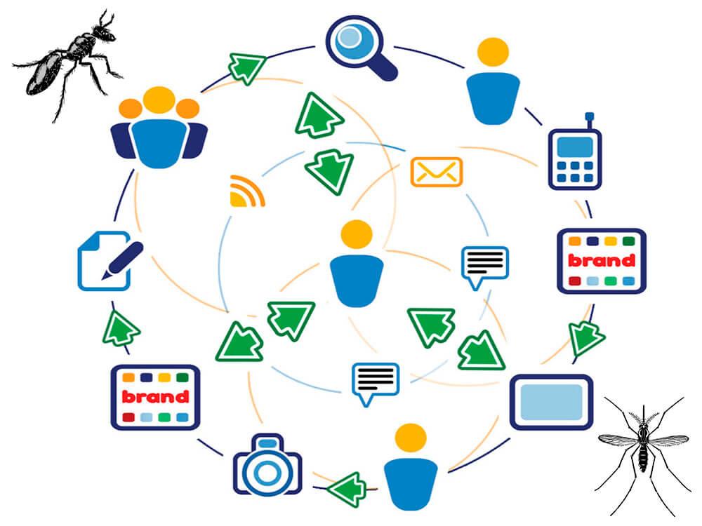Brand Your Pest Control Business pest control marketing