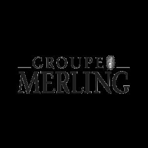 Logo merling