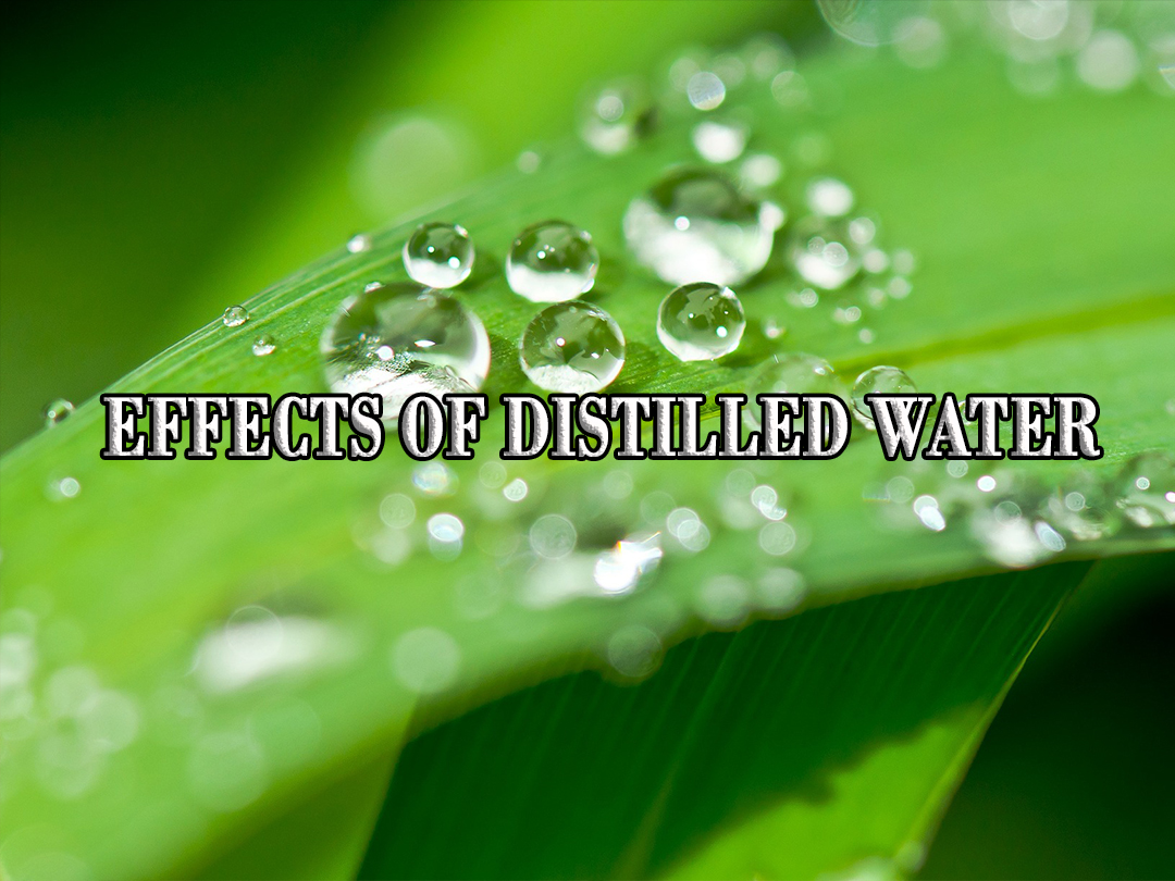 Distilled vs  Filtered Water | High Water Standard