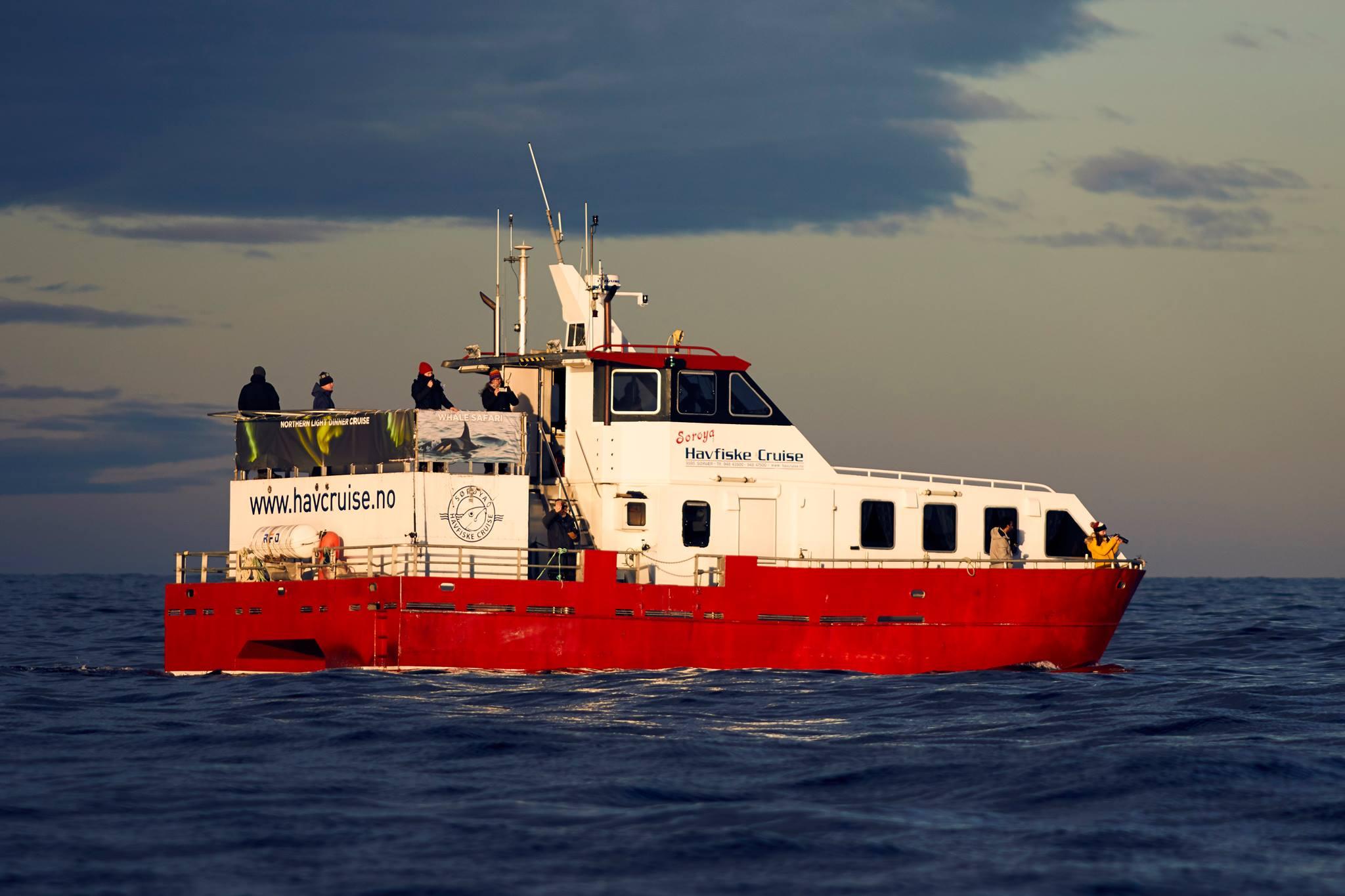Tromsø Dags Cruise