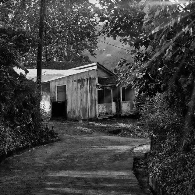 Beautiful old house up in the hills of Babonneau…  #countryside #countrysidelife #stlucia #saintlucia #saintlucianow #babonneau #saintluciawelove #caribbean #caribbeanlife #blackandwhite #blackandwhitephotography #rural #ruralliving #rurallife
