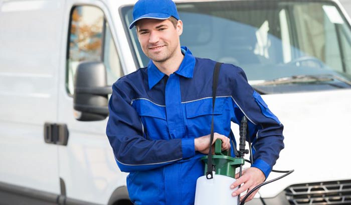 Find pest inspections near your Sunshine Coast home