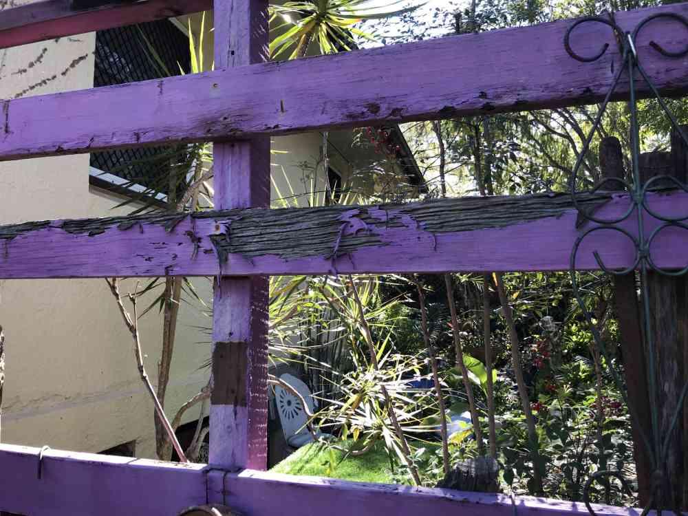 Termite damage to the fence Suburban Pest Management