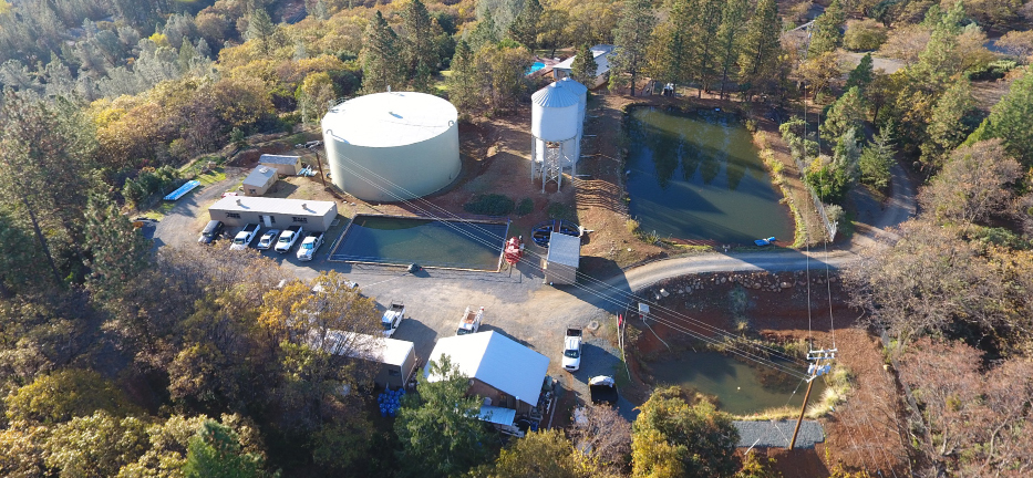 Aerial Shot of water treatment plant, two water towers next to a pond and treatment buildings, surrounded by pine trees.