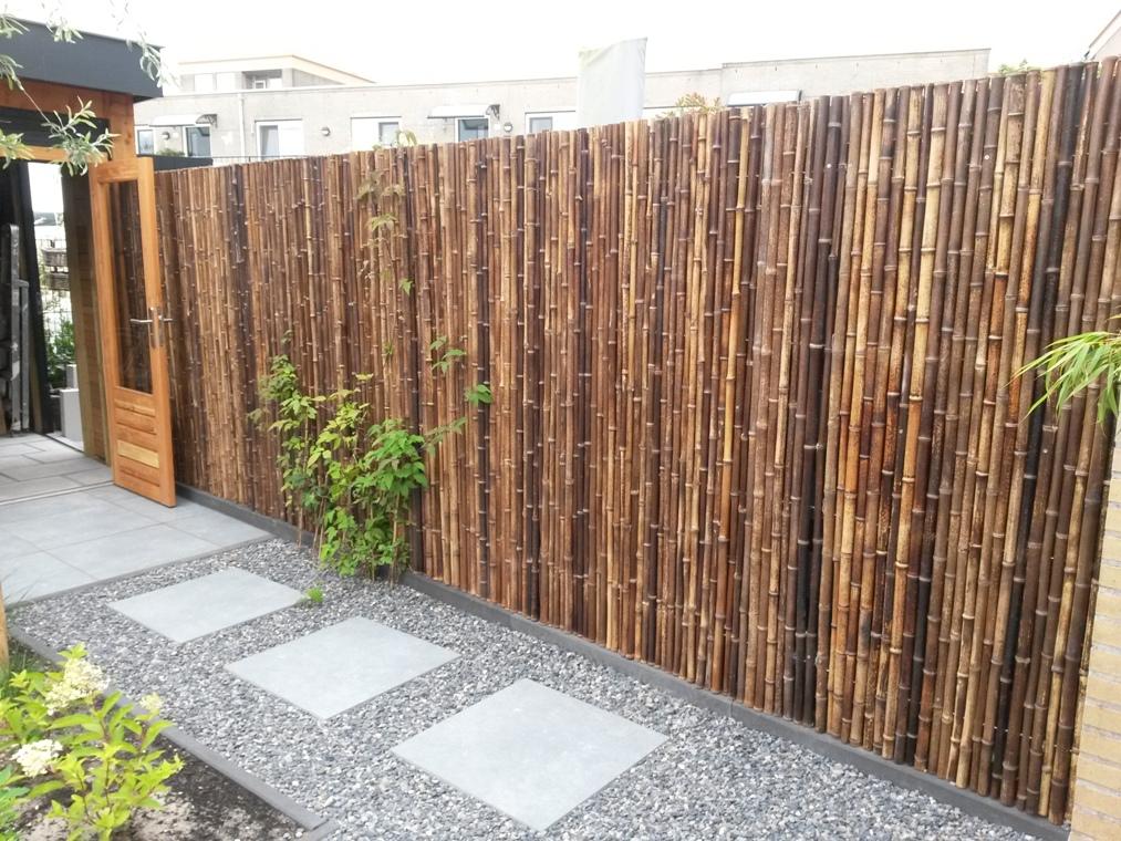 Bamboe op rol