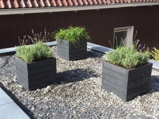 Plantenbakken op het dak