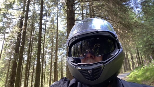 Riding through towering pine forests