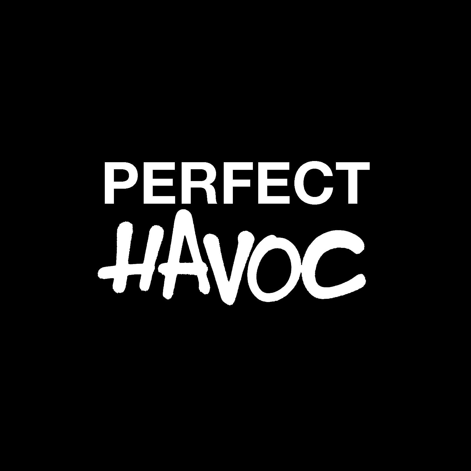 LSA partners with Perfect Havoc Records!