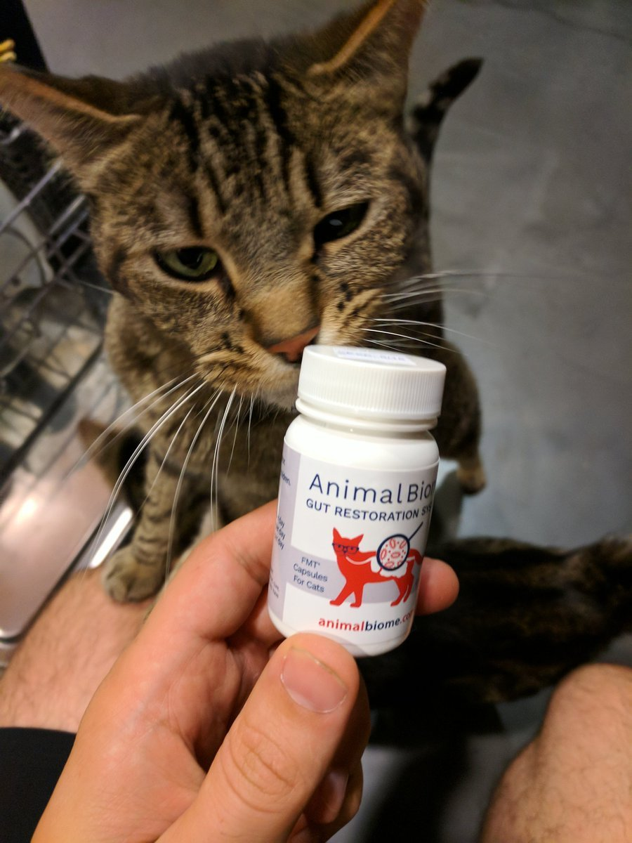 AnimalBiome product with cat in background - AnimalBiome