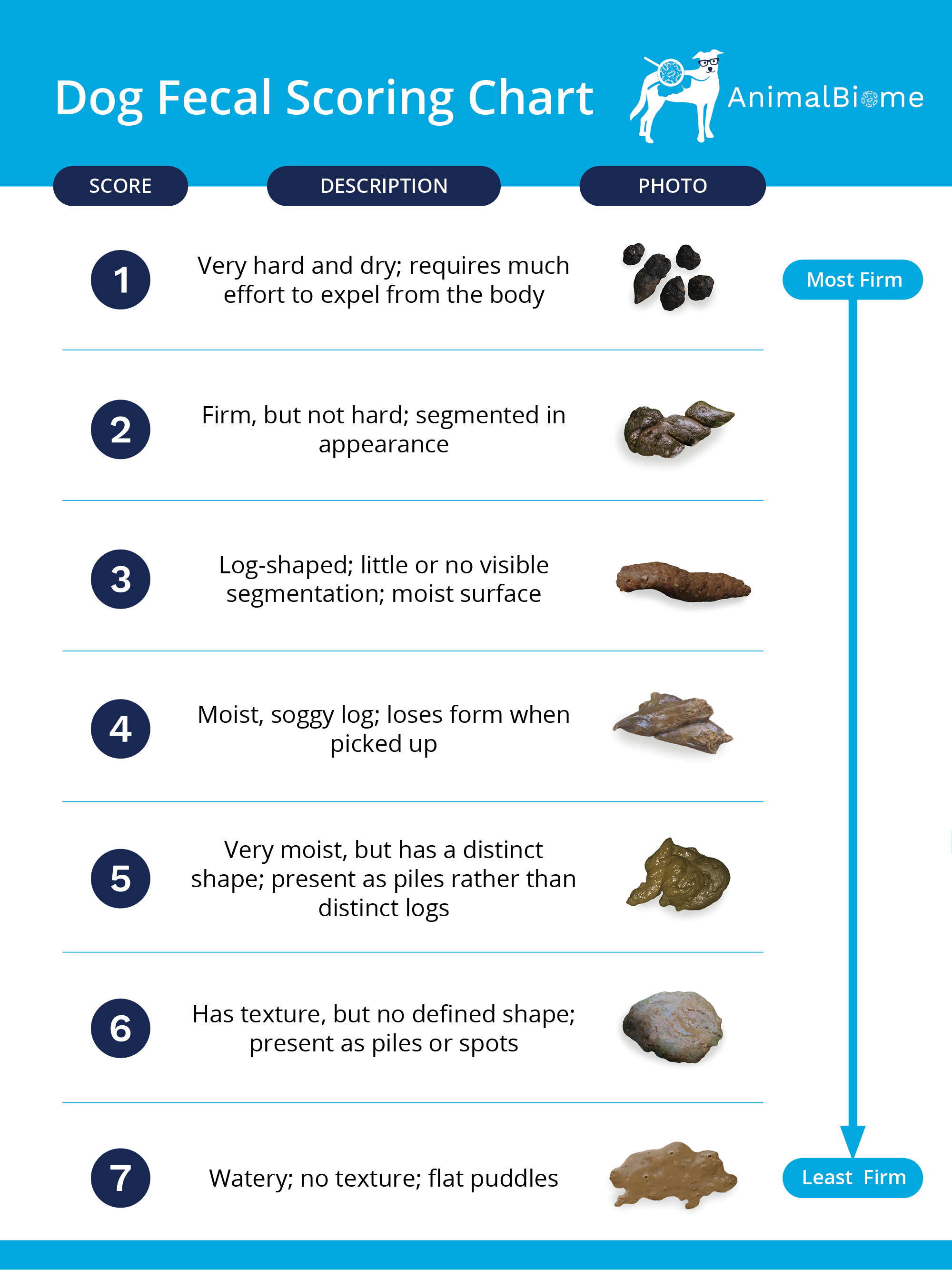 Dog Fecal Scoring Chart: What does dog poop say about your dog's health? Dog diarrhea