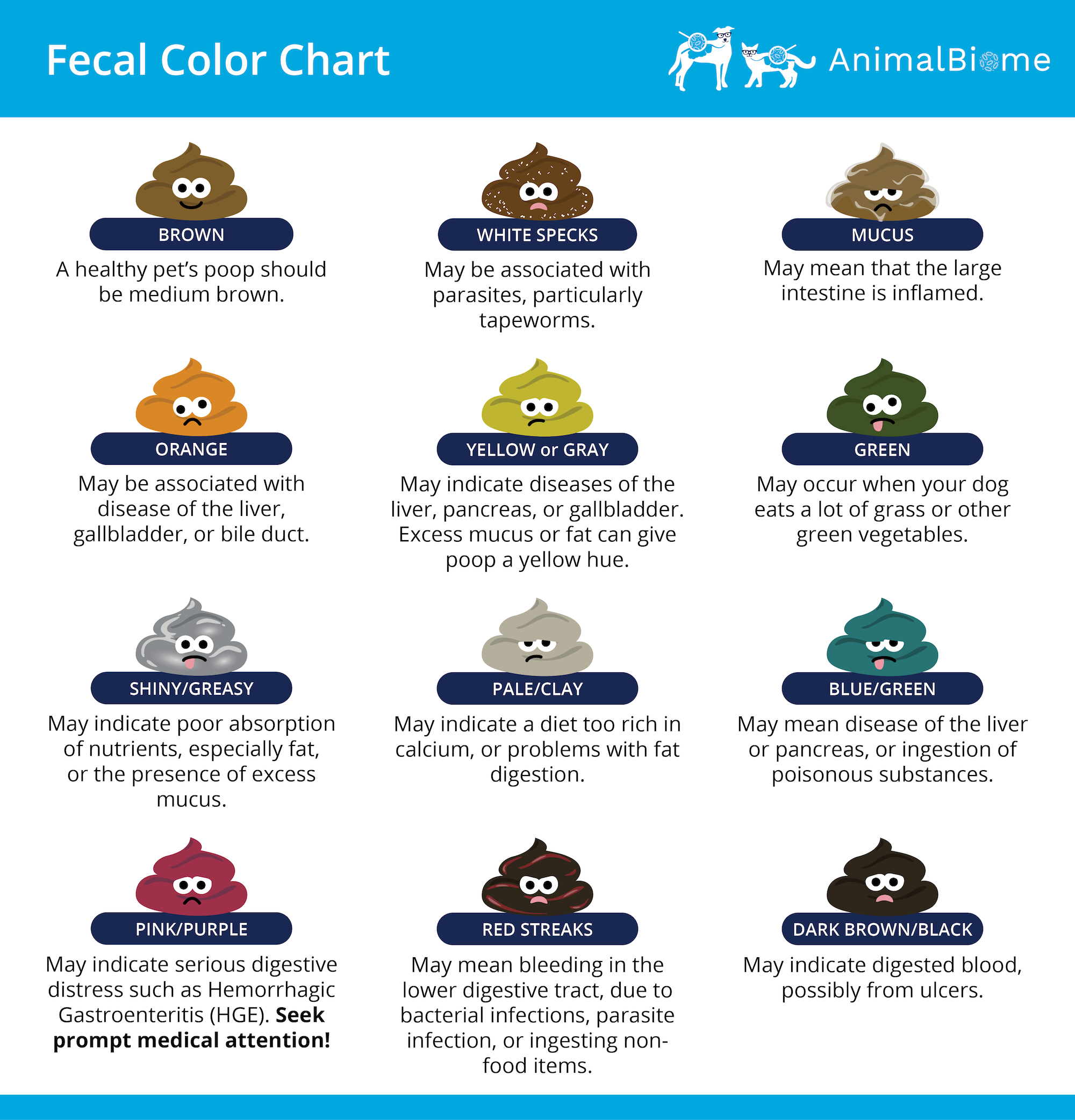 Dog Fecal Color Chart: It's important to pay attention to the color of your dog's poop.