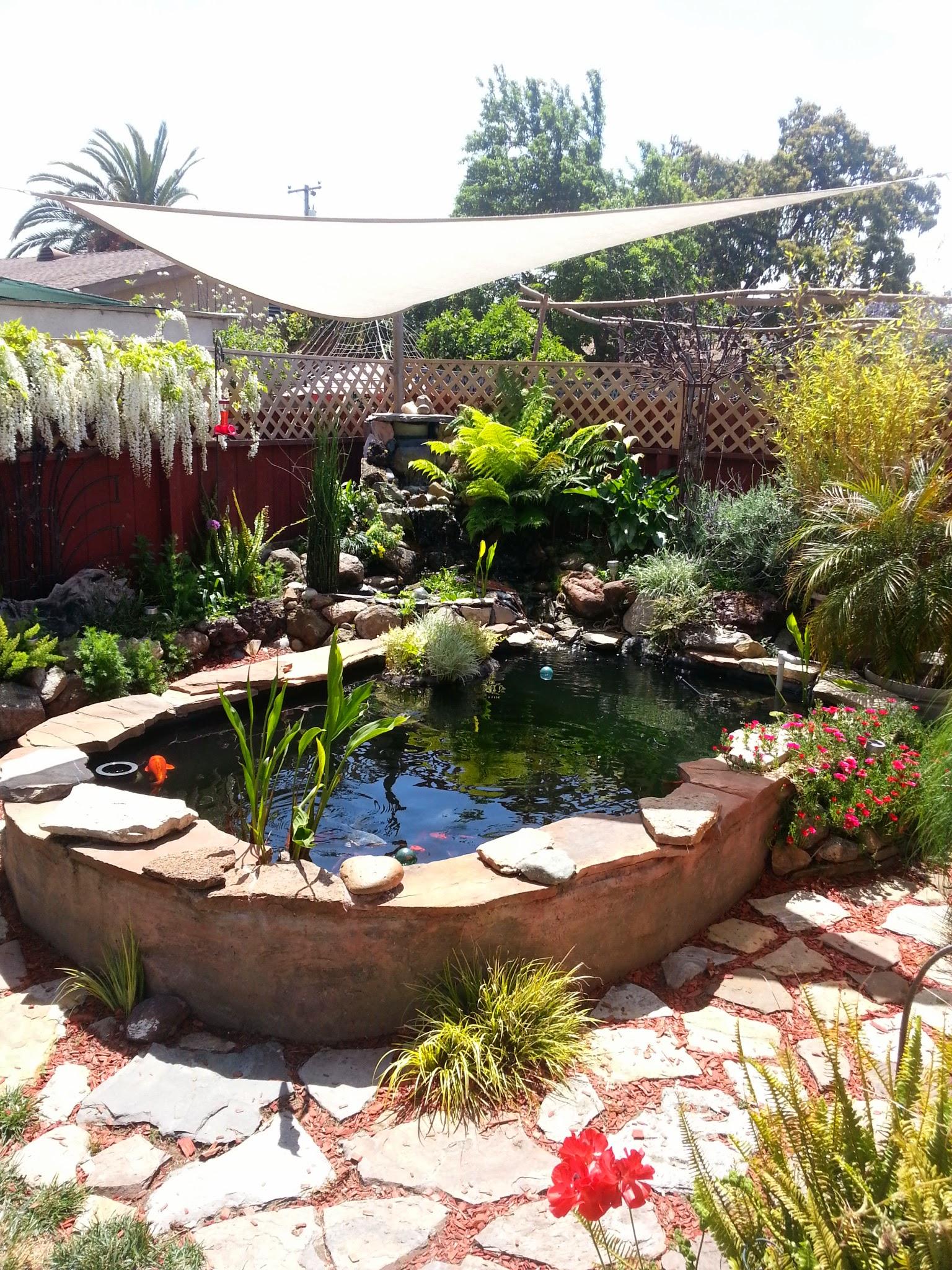 Griffin's pond.
