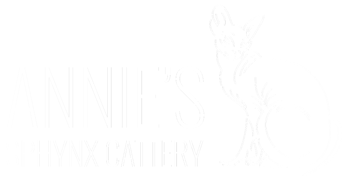Sphynx Kittens - TICA Registered Sphynx Breeder VA