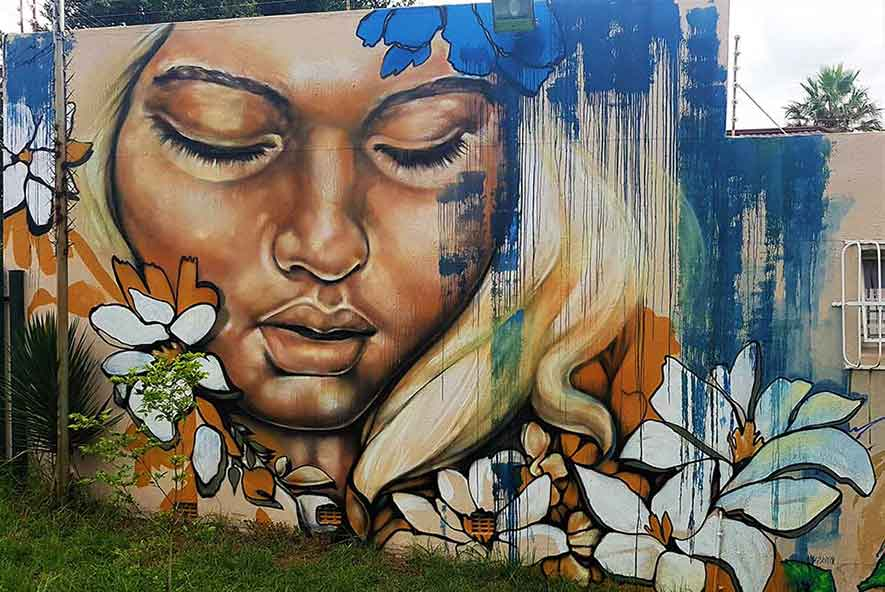 street art mural female portrait dripping paint effect, graffiti in a park
