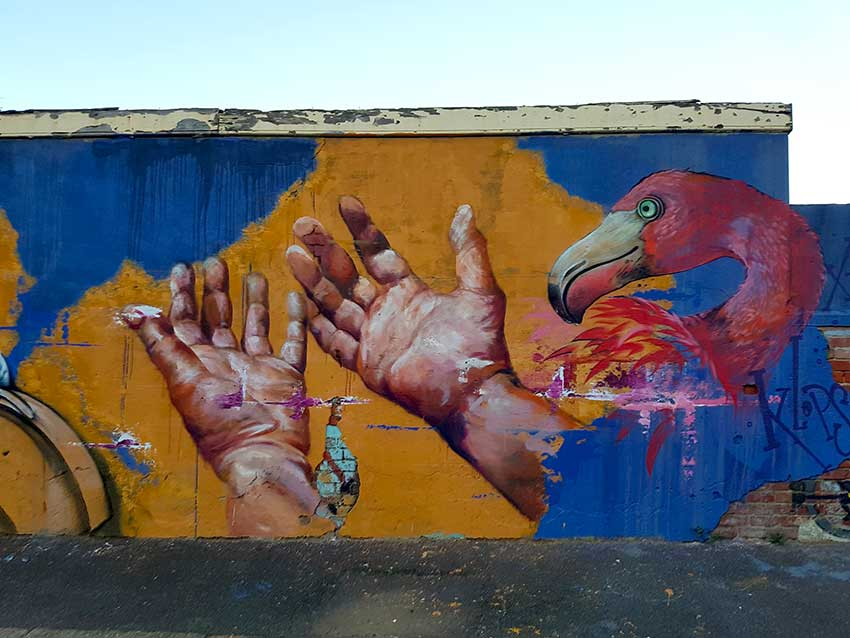 street art mural painting of hands and flamingo