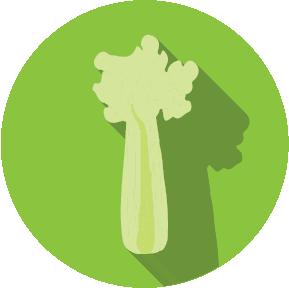 Food Allergen - Celery