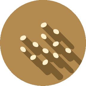 Food Allergen - Sesame Seeds