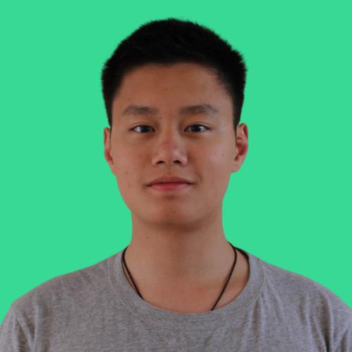 Zhang Wei C.