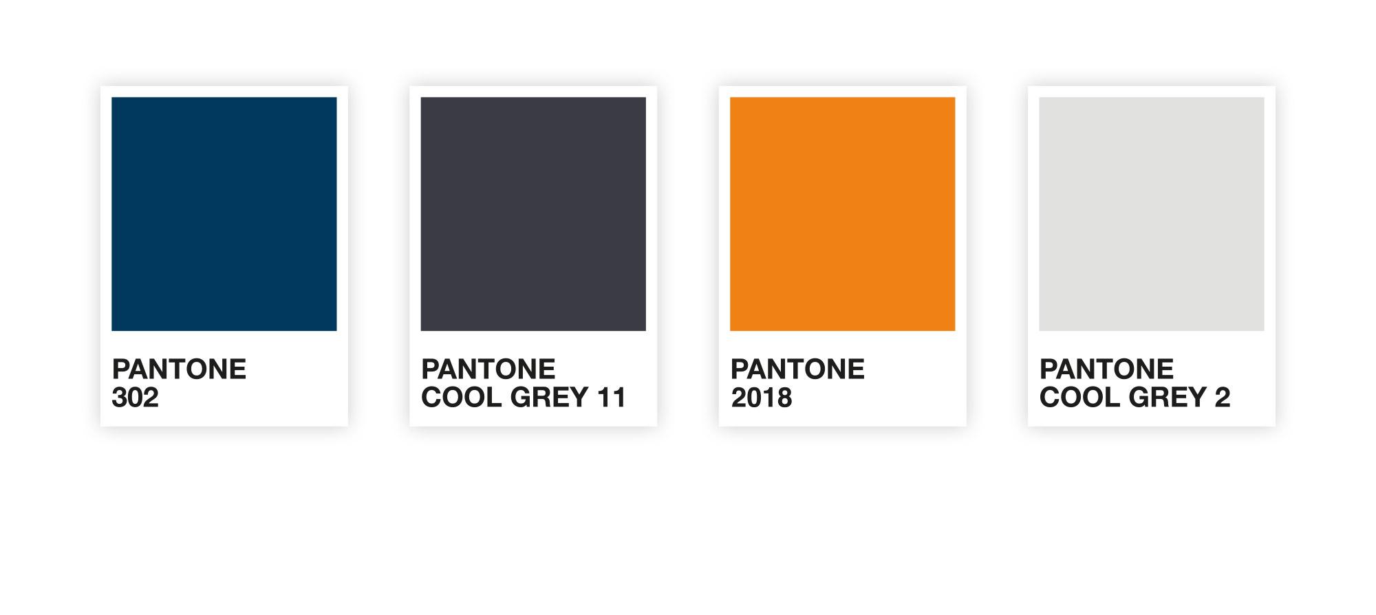 brand design and colour palette for 3SDL