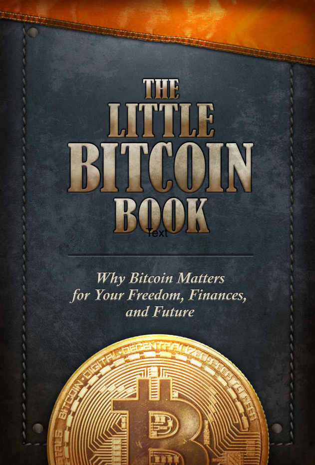 The Little Bitcoin Book