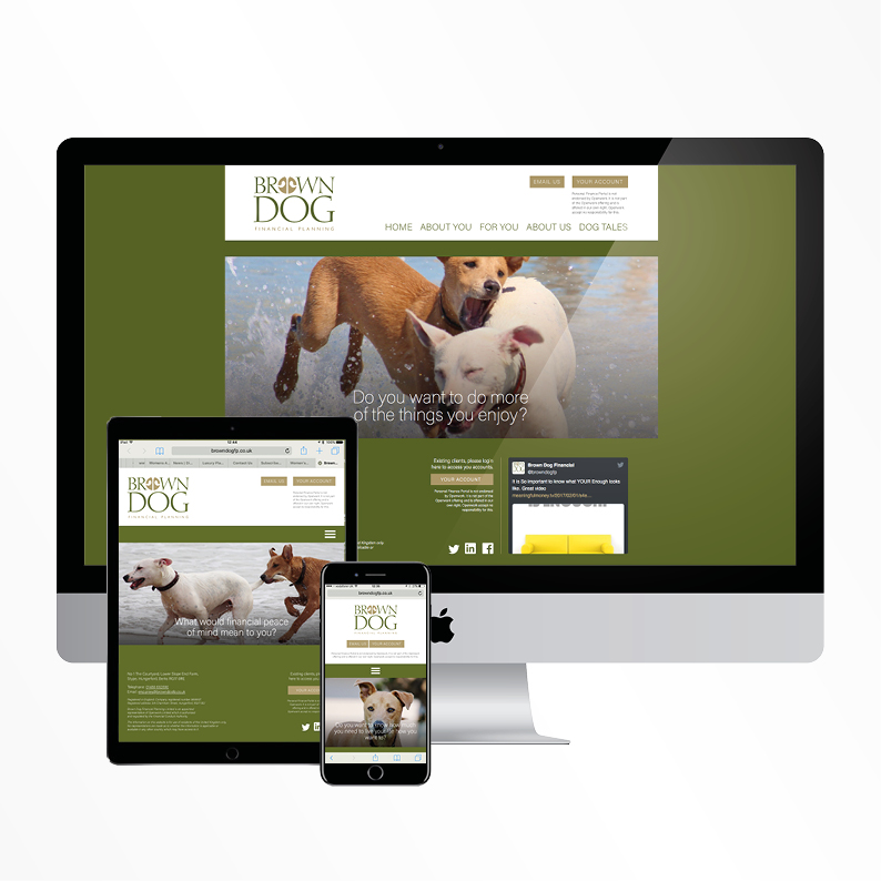 Brown Dog Financial Planning website