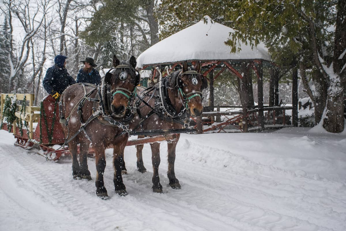 A local farm and its draft horses providing a lantern-lit sleigh ride at the Lake Clear Lodge & Retreat, just outside of Lake Placid, Saranac Lake, and Tupper Lake.