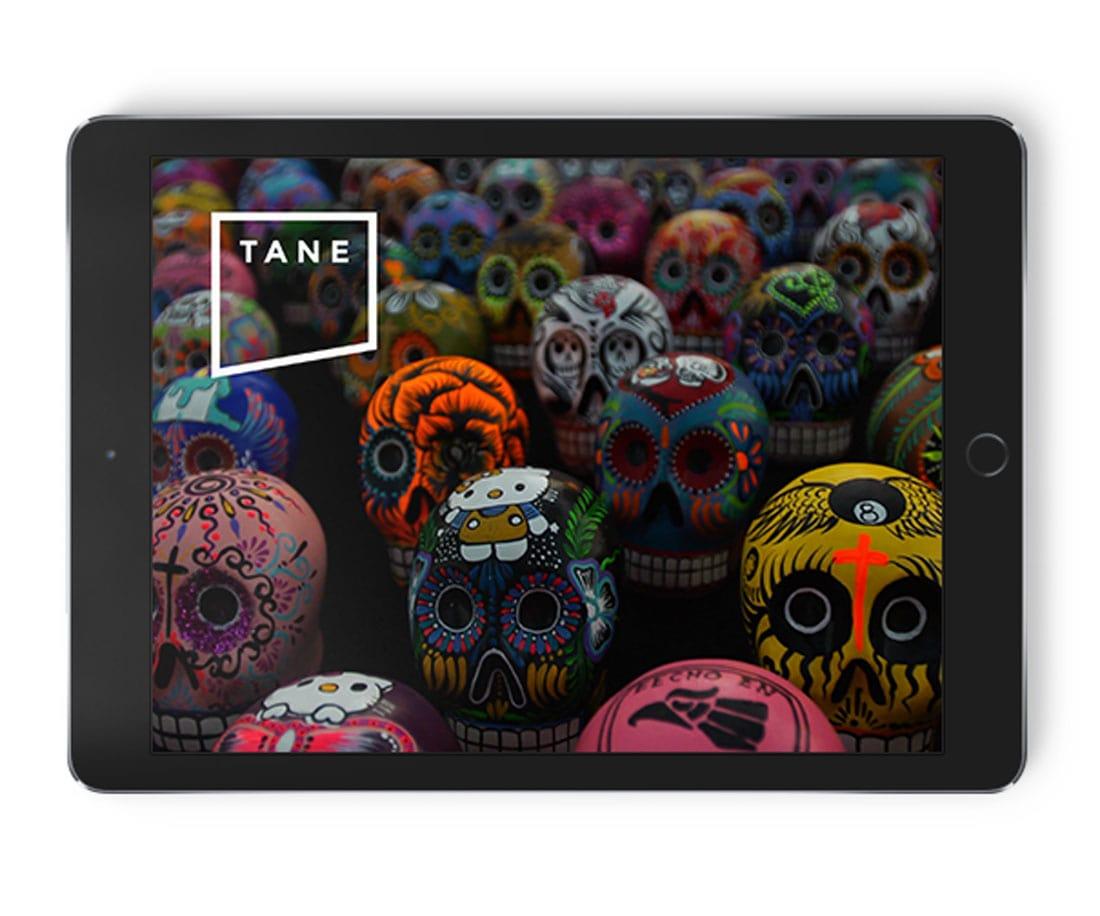 TANE logo on an iPad mockup. © LET'S PANDA