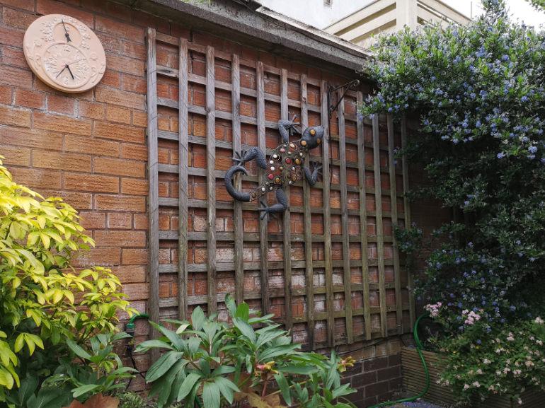 Photo of a Individual Care Services property Hartshill Nuneaton garden