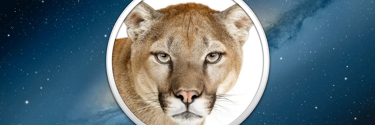 Mountain Lion Server