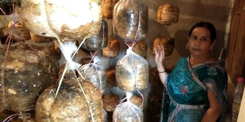 Mushroom Cultivation has changed the life of Sumati Mishra