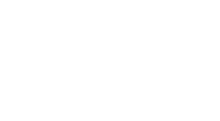 Webflow Logo White