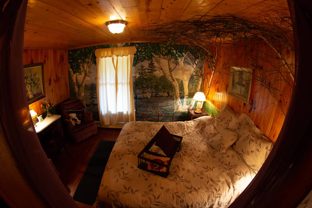 Birch room with king bed