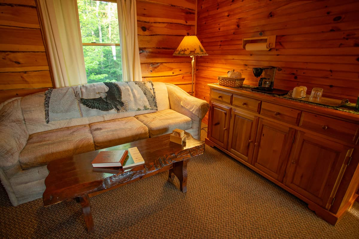Eagle's Nest Suite with fold out couch, microwave, coffee maker and fridge