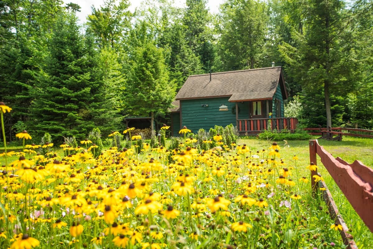 Guides Cabin Exterior in the Summer