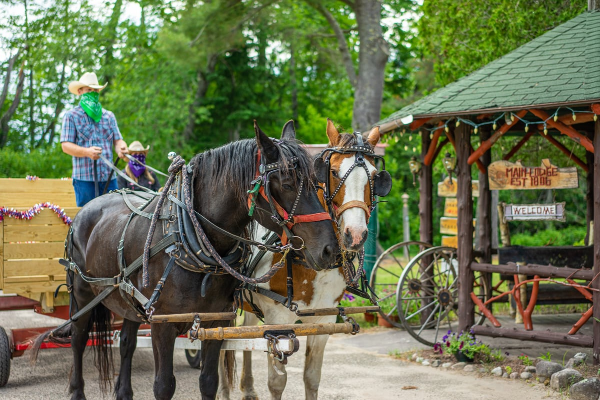 Draft Horses Pull a Hand-crafted Wagon in Front of the 1886 Main Lodge Lobby in Lake Clear, NY
