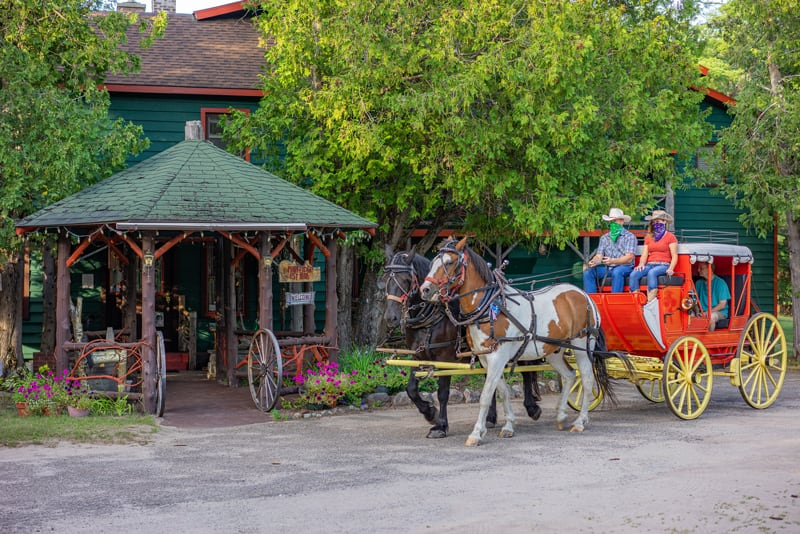 Percheron Draft Horses Jasper & Fly from Lucky Clover Sleigh Rides with the 1850s Stagecoach in front of the 1886 Main Lodge.