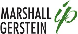 Marshall, Gerstein & Borun LLP