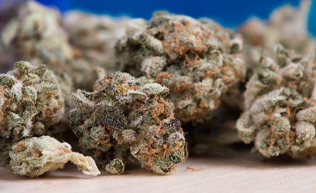 pile of cannabis nuggets on table