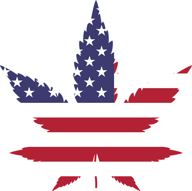 united states flag on cannabis leaf