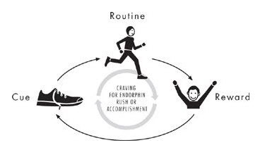 cue routine reward charles duhigg power of habit