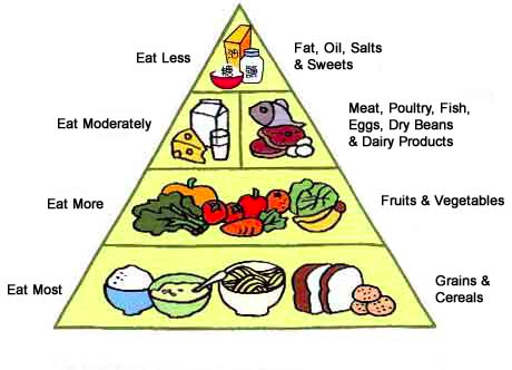 As recently as 20 years ago, this food pyramid was still being taught to  students in the U.S.: