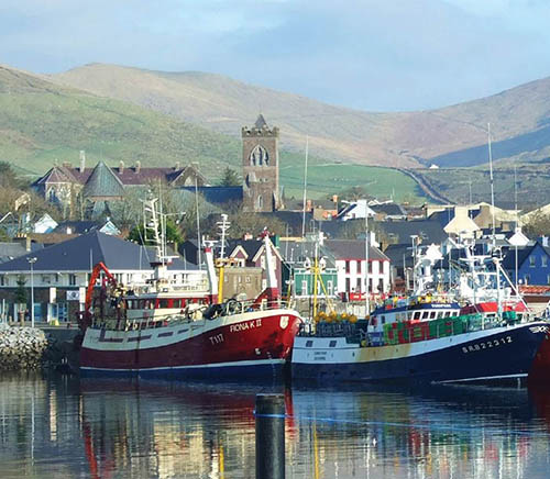 Two fishing boats with Dingle Town in the background on a sunny day