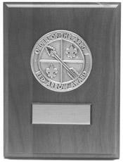 Red Arrow Award