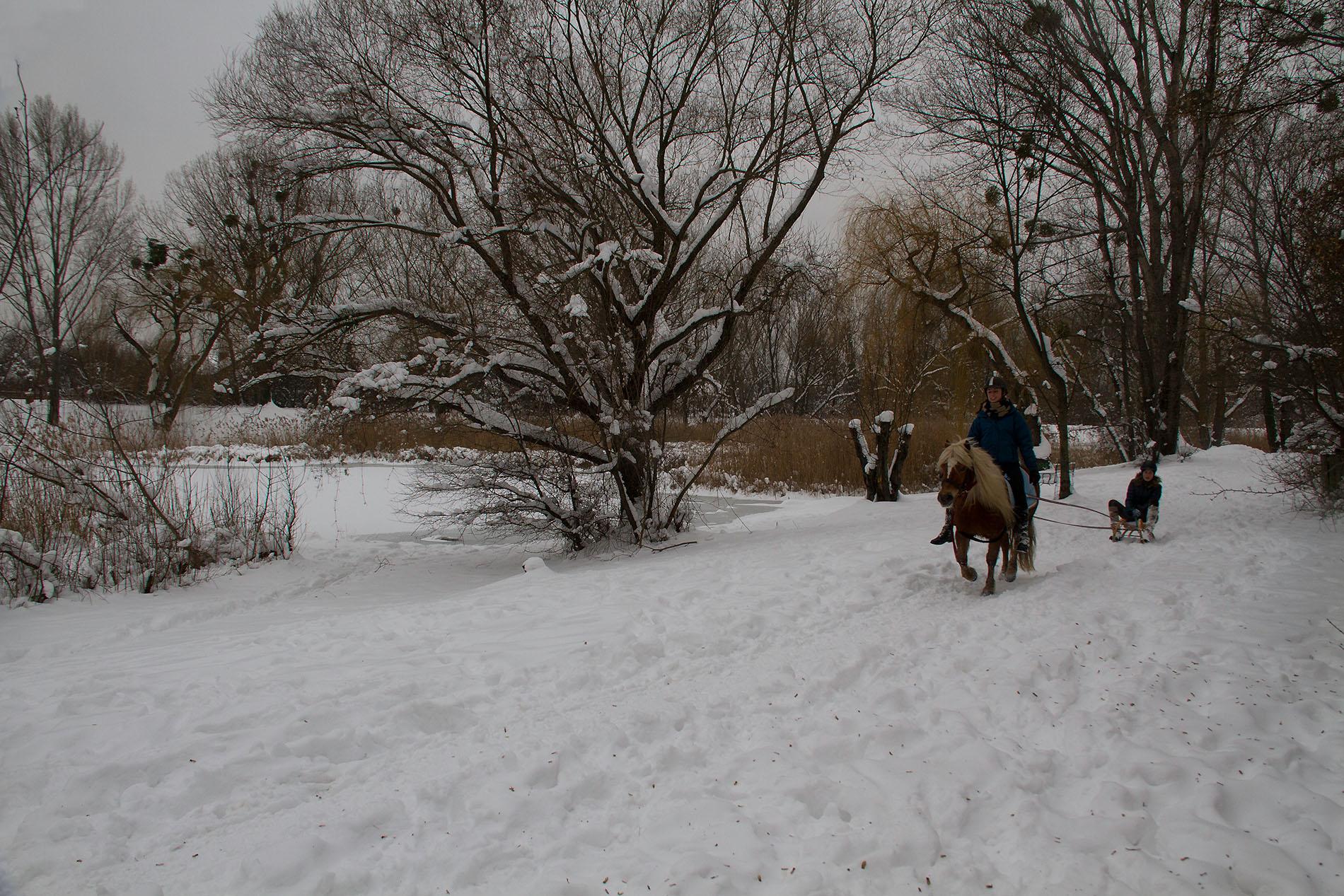 Kinder mit Pferd und Rodel am Mühlwasser