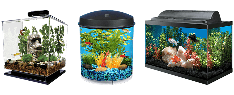 The Best Fish Tanks For Goldfish For 2019 Top 10 Review