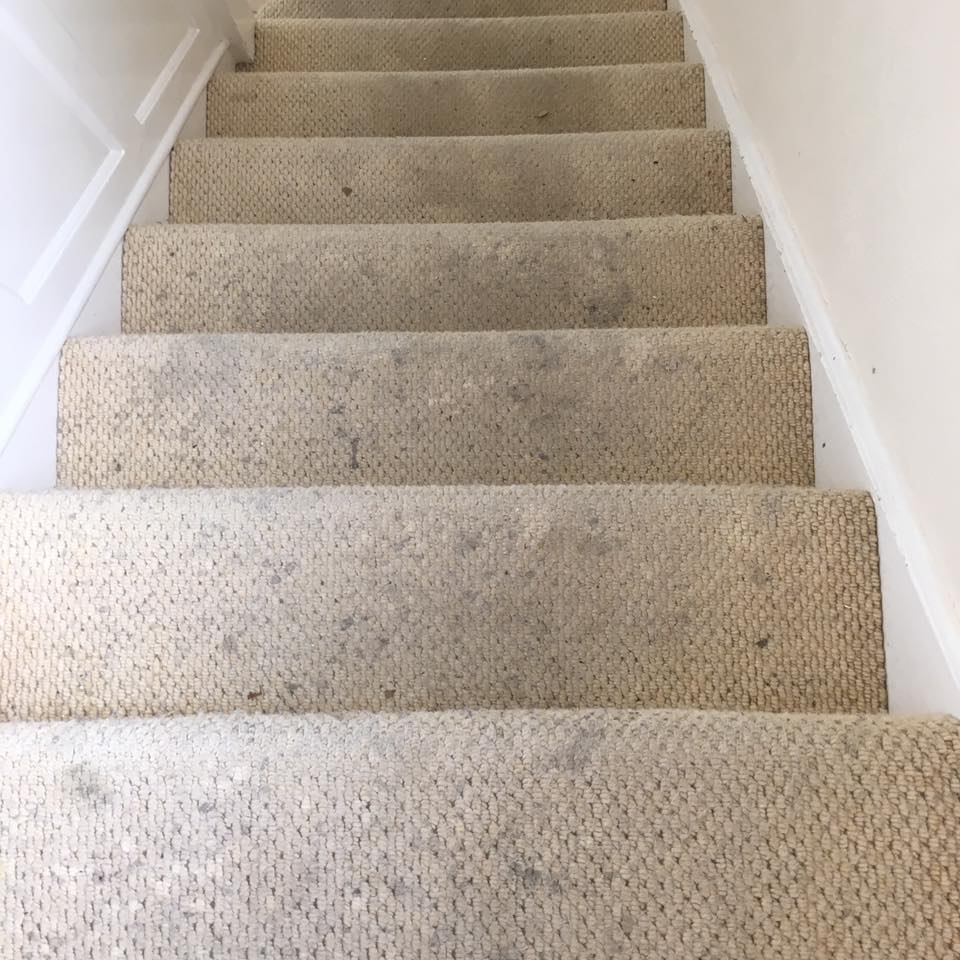 Dirty carpet image