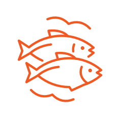 2 orange fish icons with surrounding waves