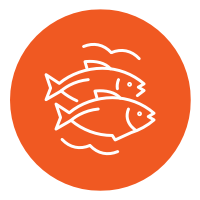 Icon of 2 fish with surroundig waves