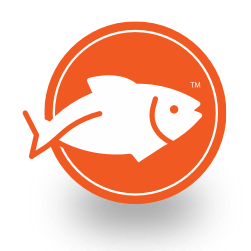A single white fish jumping in an orange circle